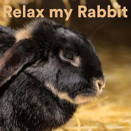 The Rabbit Relaxer - Rabbit Spa Music  (2020)