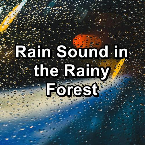 Nature Sounds – Sons de la nature, Nature and Rain, Sleep Sounds of Nature - Soft Rain For Relaxing Times Relaxing and Loopable for a 10 Hours Sleep  (2020)