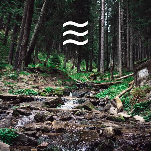 Foresty Sounds - Babies Sleep Forest Sounds  (2020)