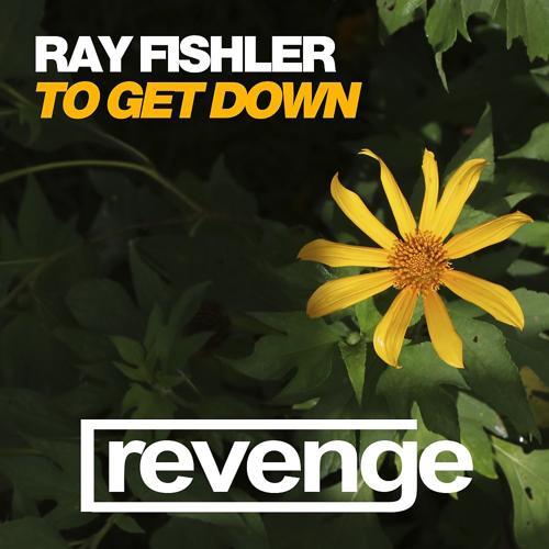 Ray Fishler - To Get Down (Jungle Jaxx Remix)  (2020)