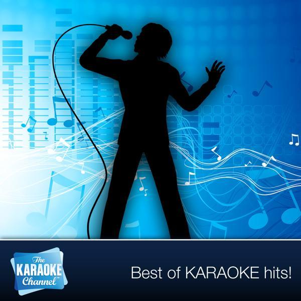 Альбом: The Karaoke Channel - Sing I'm in You Like Peter Frampton