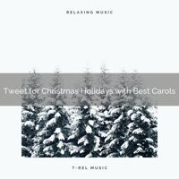 White Noise Research - Happy are Christmas with Classics and Recharging Wild Birds Songs