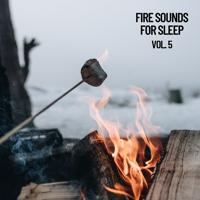 Fireplace Sounds - Fireplace at Winter