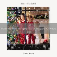 Relaxing Music Therapy - Christmas Among the Trees with Classics and Pure Nature for Dreams