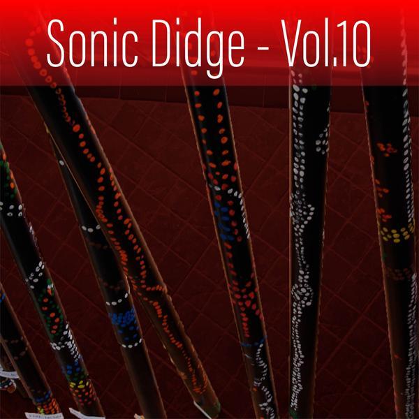 Альбом: Sonic Didge, Vol. 10