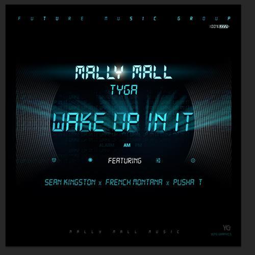French Montana, Pusha T, Tyga, Sean Kingston, Mally Mall - Wake Up In It (feat. Sean Kingston, French Montana & Pusha T)  (2013)
