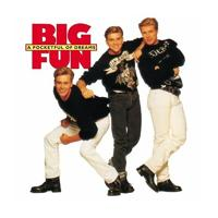 Big Fun - We're In This Love Forever