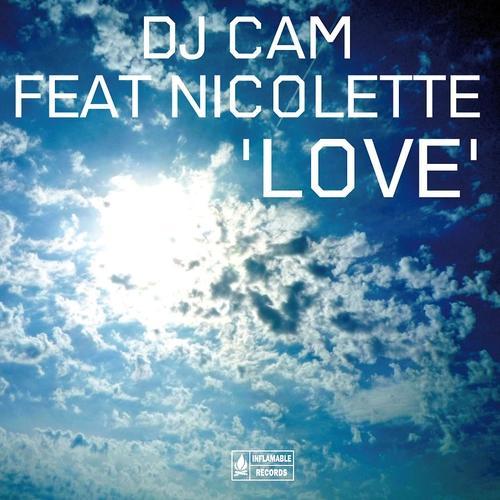 Dj Cam - Love  (2010)